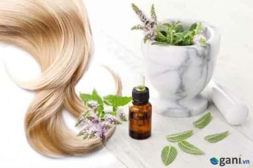 Giải đáp: Tinh dầu gì kích thích mọc tóc nhanh nhất 1