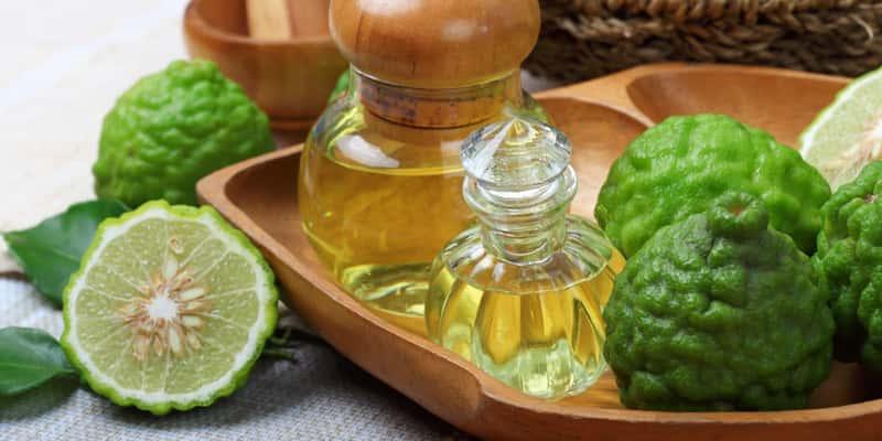 Bergamot là gì? Ứng dụng tuyệt vời của bergamot 3