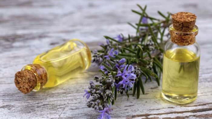 Tinh dầu hương thảo thơm nồng nàn