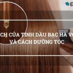 9 Lợi Ích Của Tinh Dầu Bạc Hà Với Tóc Và Cách Dưỡng Tóc 3